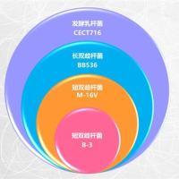 """""""蕴育时光""""创新营养新概念   打响""""三合一""""高端营养攻坚战"""