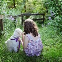 女孩与猫狗形影不离患犬弓蛔虫病致失明 家有萌宠不要犯这些错