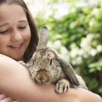 文化背景如何影响孩子对自然界的理解