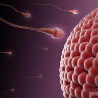 """女人排卵时,身体会发出3个""""信号"""",备孕夫妻别错过!"""