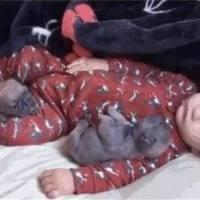 宝宝午睡竟没哭闹,宝妈放心不下偷偷观察,开门一看笑岔气