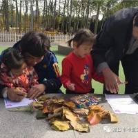 """龙口市市直机关第三幼儿园中班组""""我和秋天有个约会""""亲子活动"""