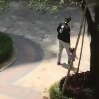 爸爸带女儿和儿子一起出去玩,接下来的场景,让儿子的心都碎了