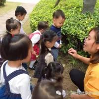 【托班社会实践——户外英语课堂】晋江市磁灶阳光豪庭小金星幼儿园