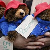 帕丁顿熊与无家可归的孩子