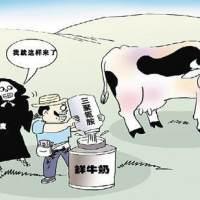 南山毒奶粉事件:亚华乳业仅道歉不够 食品安全底线何在?