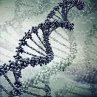 国学DNA,让孩子受益终身。