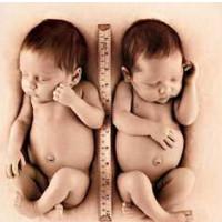 怎麽才能生雙胞胎 生雙胞胎的秘訣是什麽