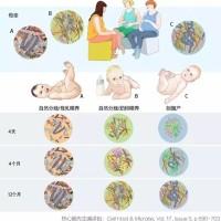 茵栀黄禁用  新生儿黄疸的治疗喂药师怎么看