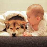 孩子咳嗽、打喷嚏老不好可能不是感冒  小心过敏