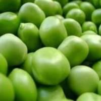 产后催乳食谱之蔬菜催乳