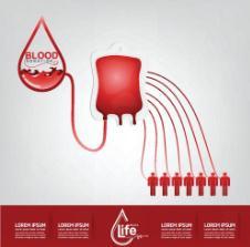 哺乳期能献血吗