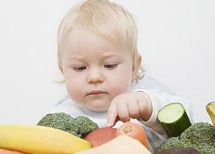 宝宝不爱吃饭吃什么