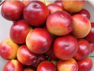 孕婦能吃油桃嗎