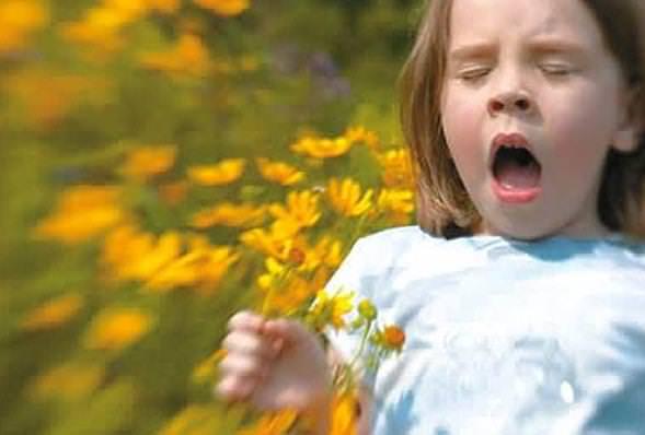 儿童花粉过敏