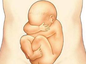 懷孕6個月胎動