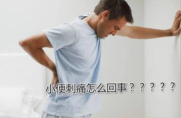 小便刺痛 -晨心家政,上海家政领导品牌