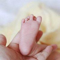 家有早产宝宝,如何知道孩子发育是否迟缓?该如何护理?_家家母婴