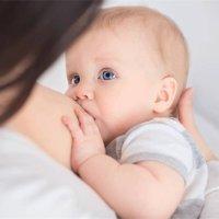 孩子早餐是先吃奶還是先吃飯?這個順序萬萬不能亂!