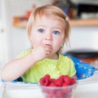 水果水果要蒸熟吗?哪些容易过敏?怎么添加?一篇搞懂!