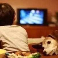 孩子每天看电视超一小时,对身体这方面的伤害就增一分,别不在意