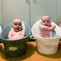 萌到肝儿颤!来品品四胞胎宝贝们的镜头表现力